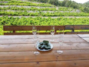 TRANSFER SPLIT STON DUBROVNIK WINE TASTING